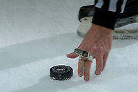 KELOWNA, CANADA - FEBRUARY 14:  An ice official grabs for the puck on February 14, 2018 at Prospera Place in Kelowna, British Columbia, Canada.  (Photo by Marissa Baecker/Shoot the Breeze)  *** Local Caption ***