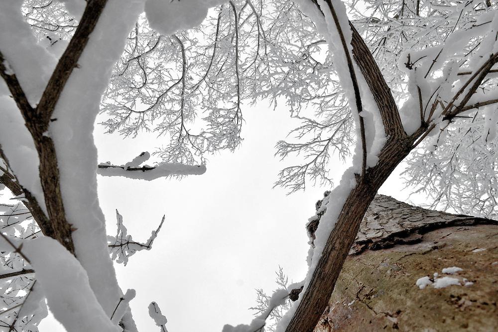 Ohio snow.