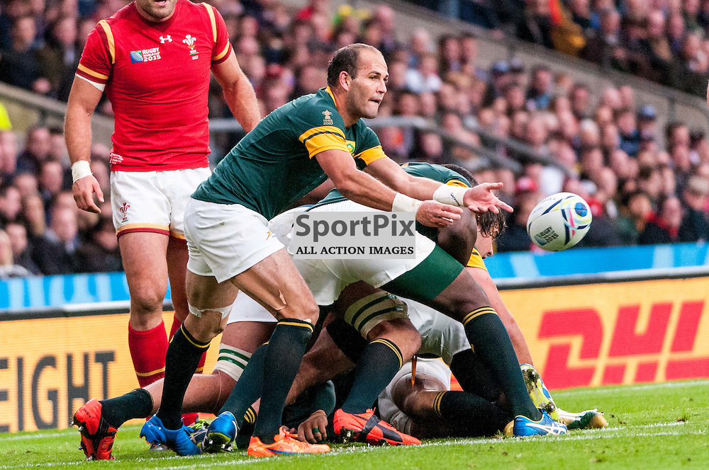 South Africa captain Fourie du Preez (a World Cup winner in 2007). Action from the South Africa v Wales quarter final game at the 2015 Rugby World Cup at Twickenham in London, 17 October 2015. (c) Paul J Roberts / Sportpix.org.uk