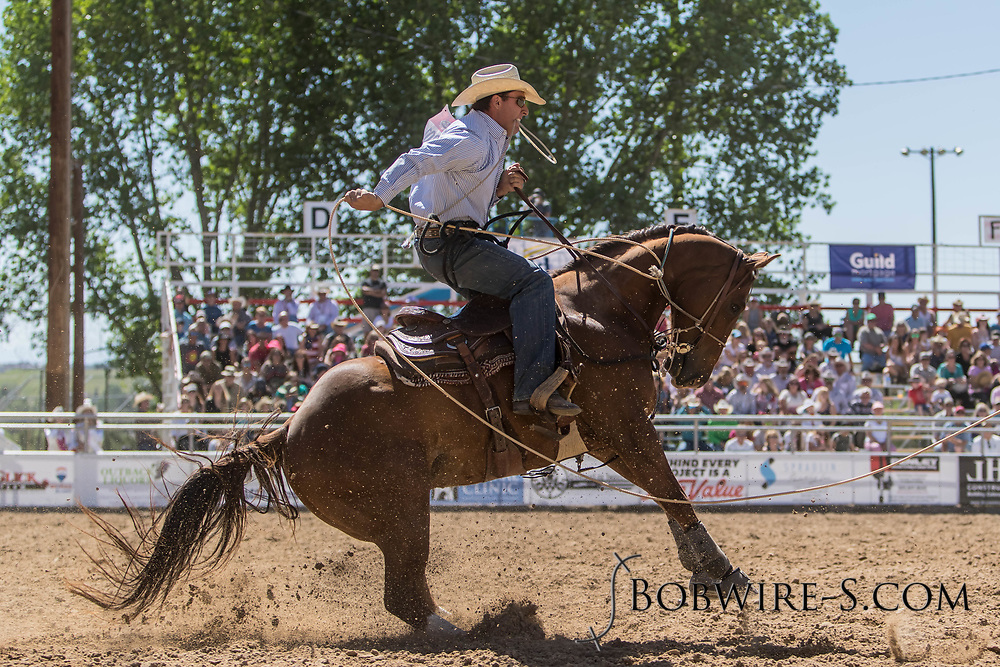 Tie-down roper Cody Nye makes his run in the first performance of the Elizabeth Stampede on Saturday, June 2, 2018.