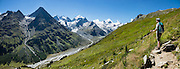 """The icy Bernina Range rises above Ova da Roseg river valley, near Pontresina, Switzerland, in the Bernina Alps, Europe. Tschierva Glacier flows from the peaks clustered on left: Piz Bernina (4049 m), Piz Scerscen (3971 m) and Piz Roseg (3937 m). At right (west), Roseg Glacier flows from Piz Glüschaint (3594 m). Val Roseg is in the Swiss canton of Graubünden (or Grisons / Grigioni / Grischun); the lower Roseg Valley is in Pontresina, whereas the upper valley is in an exclave of Samedan Municipality. Hike from Pontresina up Roseg Valley to Fuorcla Surlej for stunning views of Piz Bernina and Piz Roseg, finishing at Corvatsch Mittelstation Murtel cable car. Walking 14 km, we went up 1100 meters and down 150 m. Optionally shorten the hike to an easy 4 km via round trip lift. The Swiss valley of Engadine translates as the """"garden of the En (or Inn) River"""" (Engadin in German, Engiadina in Romansh, Engadina in Italian), and is part of the Danube basin. This image was stitched from multiple overlapping photos."""