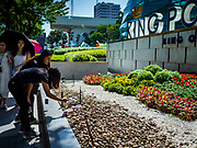 30 OCTOBER 2018 - BANGKOK, THAILAND: A woman takes photos of flowers left at the front of the King Power shopping complex in Bangkok. Vichai Srivaddhanaprabha, owner of King Power, the Thai duty free airport shops, and Leicester City soccer club, died Saturday, 27 October, in a helicopter crash after a soccer match in the UK.  PHOTO BY JACK KURTZ