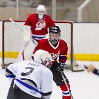 Davis Hockey