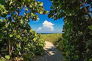 Path to Beach, Delray Beach, FL