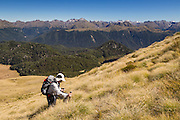 Hiker amongst golden tussock, along the hike to Mount Burns, Fiordland.