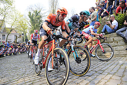 The peloton including Boy Van Poppel (NED) Roompot-Charles, Marcus Burghardt (GER) Bora-Hansgrohe and Nils Politt (GER) Katusha Alpecin on the Muur Kapelmuur Geraardsbergen during the 2019 Ronde Van Vlaanderen 270km from Antwerp to Oudenaarde, Belgium. 7th April 2019.<br /> Picture: Eoin Clarke | Cyclefile<br /> <br /> All photos usage must carry mandatory copyright credit (© Cyclefile | Eoin Clarke)