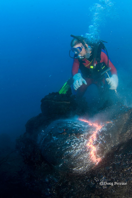 diver Bud Turpin and pillow lava at underwater eruption of Kilauea Volcano, Hawaii Island ( the Big Island ), <br /> Hawaii, U.S.A. ( Central Pacific Ocean ) MR 381