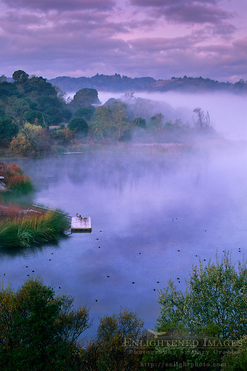 Early Morning Solitude - Fisherman at the Lafayette Reservoir, Lafayette, Contra Costa County, CALIFORNIA