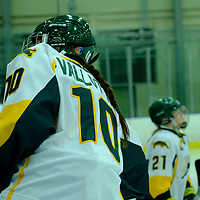 1st year defence man Shaelyn Vallotton (10) of the Regina Cougars during the Women's Hockey Home Game on October 21 at Co-operators Arena. Credit Matt Johnson/©Arthur Images 2017