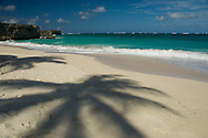 The shadow of a palm tree on the beach at Bottom Bay on the East Coast of<br /> Barbados