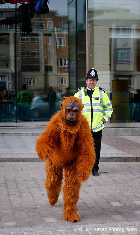 UK ENGLAND LONDON 17MAR10 - Greenpeace activists dressed as orang-utan monkeys stage a protest outside the Nestle UK headquarters in Croydon. The environmental group is criticising Nestle's involvement with Indonesian palm oil supplier Sinar Mas, a prominent company destroying the tropical rainforest and habitat for the endangered Orang-Utans...jre/Photo by Jiri Rezac / GREENPEACE