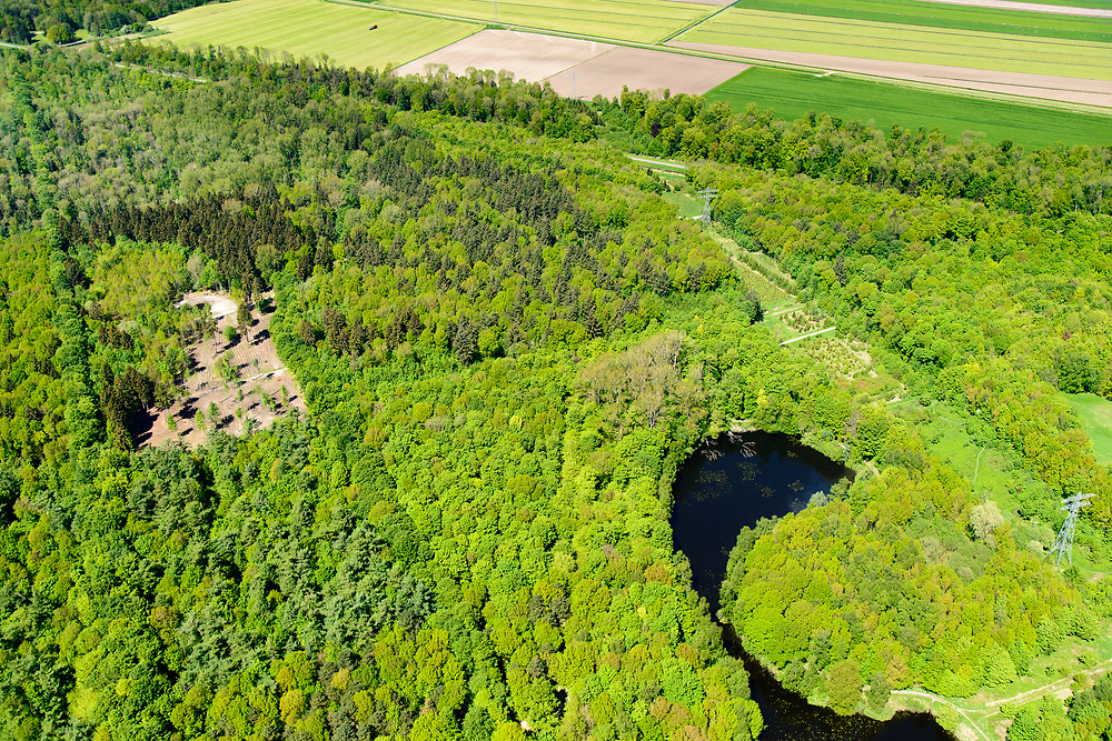 Nederland, Flevoland, Noordoostpolder, 07-05-2018; bos bij Luttelgeest en Kuinre.<br /> Aangeplant bos. <br /> Planted forest in new polder, North East Polder.<br /> <br /> luchtfoto (toeslag op standard tarieven);<br /> aerial photo (additional fee required);<br /> copyright foto/photo Siebe Swart