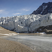 Terminus of the Suess Glacier and Lake Hoare