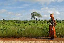 A Tanzanian woman walks home near sunset in the village of Usuru. The dense forest and tall grasses make villagers vulnerable to lion attacks. They have to stay late in the evening in their fields to protect their crops from rampaging monkeys who like to eat the rice and corn, forcing them to walk at sunset, the time of day when lions are out looking for prey.  Ami Vitale