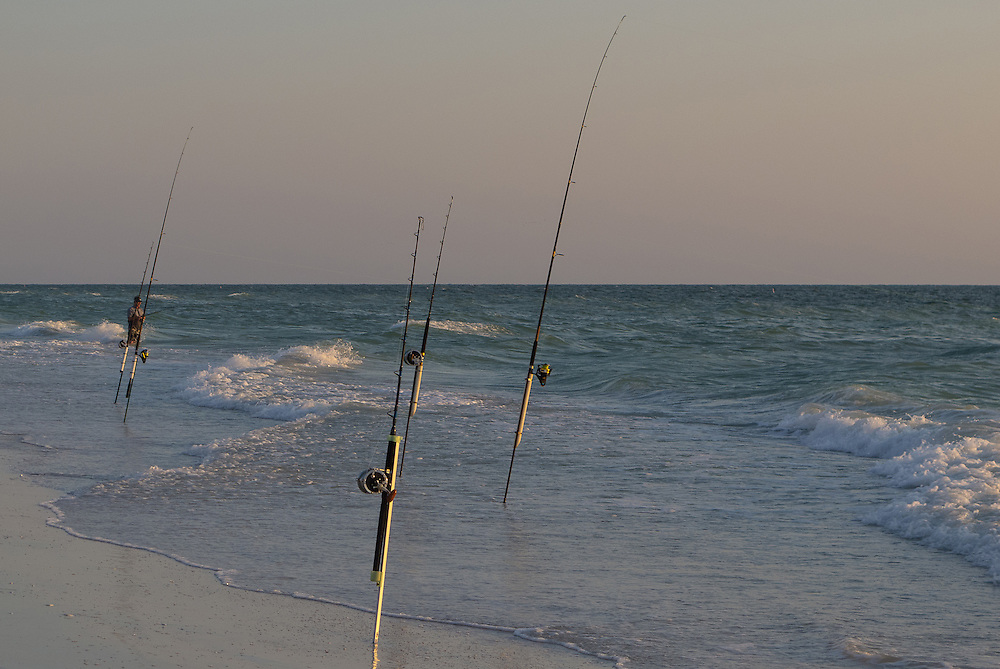 Fishing poles along the beach,