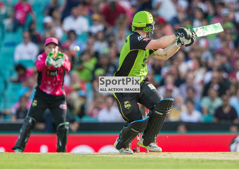 KFC Big Bash League T20 2015-16 , Sydney Sixers v Sydney Thunder, SCG; 16 January 2016<br /> Sydney Thunder Aiden Blizzard edges to Sydney Sixers Brad Haddin and is caught from the bowling of Sydney Sixers Sean Abbott