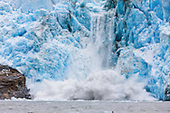 Calving ice from Dawes Glacier creates an explosion of water in the Endicott Arm fjord of Tracy Arm - Fords Terror Wilderness in the Inside Passage of   Southeast Alaska  Summer.  Afternoon.