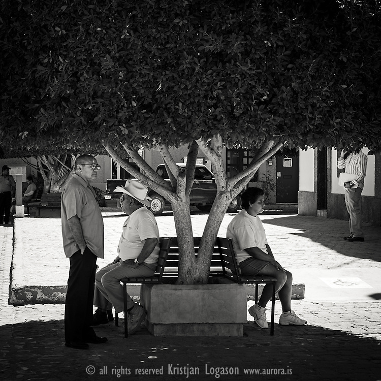 People in central Loretteo in Baja califoria sitting in the shade from a big tree cooling of in the eat of the day