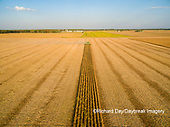 63801-09218 Soybean Harvest, John Deere combine harvesting soybeans - aerial - Marion Co. IL