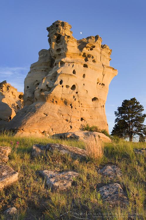 Eroded sandstone rock formations in Medicine Rocks State Park in SE Montana