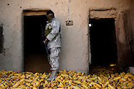 An Iraqi army soldier checks storage room full of corn in the Qubbah village, Iraq, Feb., 2, 2007 during Operation Lightning. Operation Lightning is an Iraqi army planned operation looking for weapon cache, personnel of high interest and gathering of intelligence with the help of the U.S. Army Soldiers from Forward Operating Base McHenry, soldiers are from 2nd Battalion, 27th Infantry Regiment, 3rd Brigade Combat Team, 25th Infantry Division, Schofield Barracks, Hawaii. The Iraqi soldier is assigned to the 1st Battalion, 2nd Brigade, 4th Infantry.