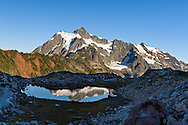 Mount Shuksan reflected in a tarn on Kulshan Ridge in the Mount Baker-Snoqualmie National Forest, Washington State, USA
