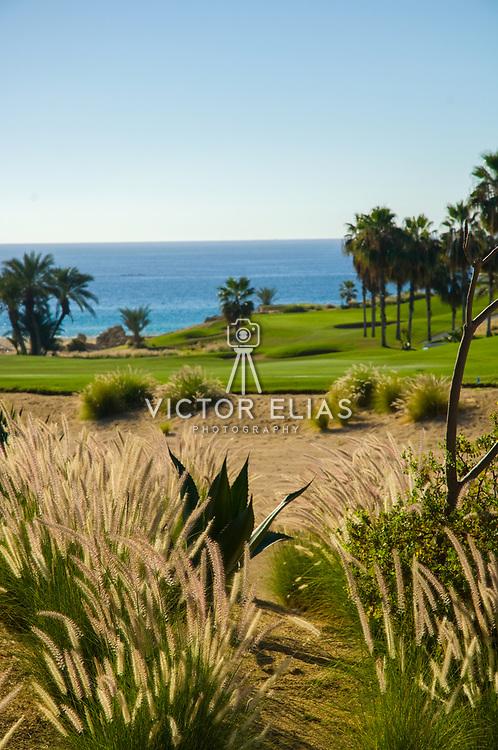 Cabo Real Golf Course. Los Cabos, Mexico.