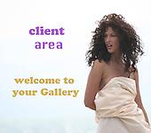 client area/ כניסה ללקוחות