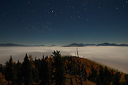 Western larch forest and fogbank at night during a full moon in fall. Yaak Valley Montana