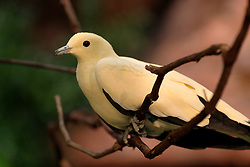 24 July 2005.  <br />