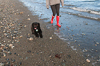 Taylor walks in new red rain boots along the ocean with Marley the Cocker Spaniel at Island View Regional Park near Victoria, BC Canada