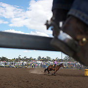 Action from the Ladies Barrel Race at the Branxton Rodeo at Branxton, Hunter Valley,  New South Wales, Australia, on Saturday 17th October 2009.  Photo Tim Clayton.