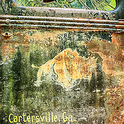 A faded symbol of a rhinoceros on a rusty old truck door as seen in the Old Car City junkyard in Georgia.