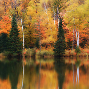 &quot;Lake Plumbago Reflections&quot;<br />