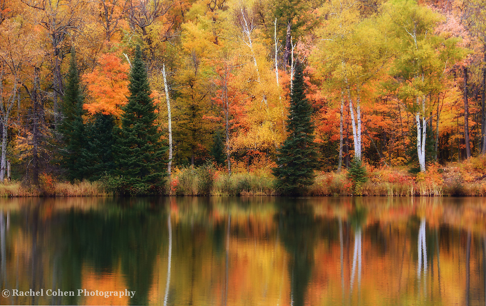 """Lake Plumbago Reflections""<br />