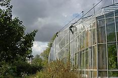 Botanische tuinen, Botanical gardens