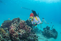 Guam Piti Marine Preserve, Aug 2015<br />