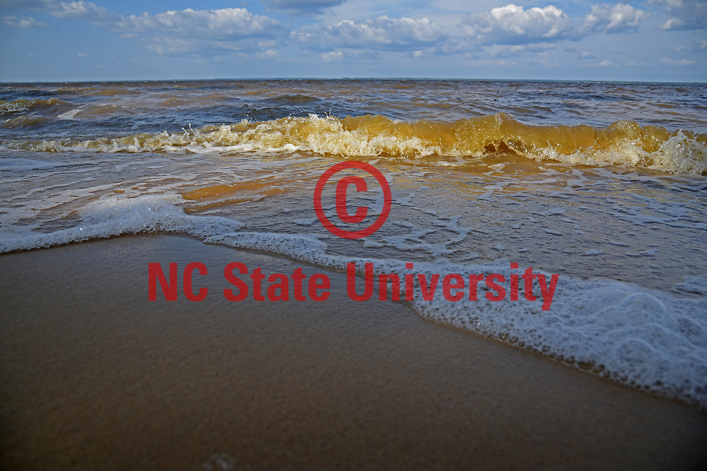 Waves wash up on Flanners Beach along the Neuse River in Craven County, between New Bern and Havelock.