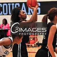 JV Lady Eagle Basketball 2014 - 2015