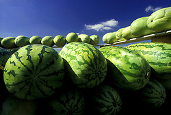 Stock photo of fresh watermelons stacked for sale