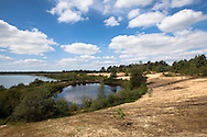 Europa, Niederlande, Limburg, Nationalpark De Maasduinen. Der Nationalpark ist einer der diversifiziertesten in den Niederlanden und umfasst unterschiedliche Naturraeume und Landschaftsformen, Sichelduenen am See Reindersmeer.<br /> <br /> Europe, Netherlands, Limburg, national park De Maasduinen. The national park is one of the most diversified in the Netherlands and includes different natural spaces and landscapes, barkhan dune at lake Reindersmeer.