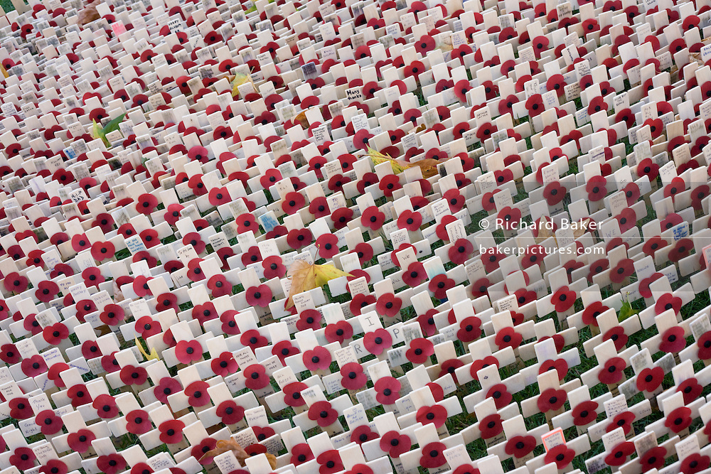 Crosses and poppies mark fallen soldiers killed during recent conflicts, seen during Remembrance weekend at Westminster Abbey, London.