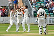Wicket - Lewis Gregory of Somerset celebrates taking the wicket of Riki Wessels of Nottinghamshire during the Specsavers County Champ Div 1 match between Somerset County Cricket Club and Nottinghamshire County Cricket Club at the Cooper Associates County Ground, Taunton, United Kingdom on 10 June 2018. Picture by Graham Hunt.