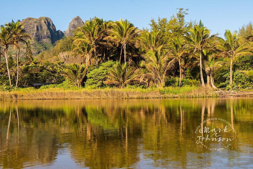 Kalalea Mountains reflected in the Anahola River, Kauai, Hawaii