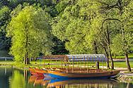 Colorful boats along shoreline of Lake Bled at sunrise, Bled, Slovenia