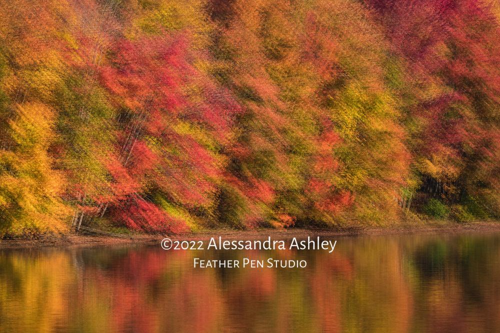 Multiple exposure montage, morning reflections of peak autumn foliage along the shores of central Ohio's Clear Fork Reservoir.