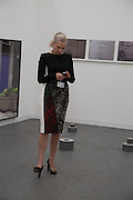 AMANDA WILKINSON, The VIP preview of Frieze. Regent's Park. London. 16 October 2013