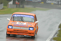 #96 David Javes MG Metro Turbo during the MGCC Drayton Manor Park MG Metro Cup at Oulton Park, Little Budworth, Cheshire, United Kingdom. September 03 2016. World Copyright Peter Taylor/PSP.