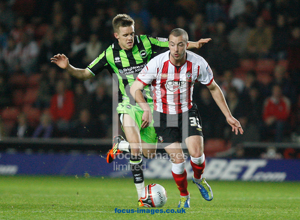 Picture by Daniel Chesterton/Focus Images Ltd. 07966 018899.19/11/11.Steve De Ridder of Southampton and Craig Noone of Brighton during the Npower Championship match at St Marys Stadium, Southampton.