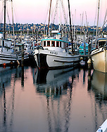 Fishing boats at Fishermen's Terminial in Seattle